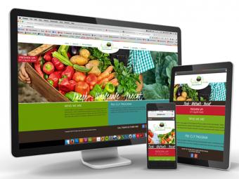 Garden Fresh Salad Company – Website